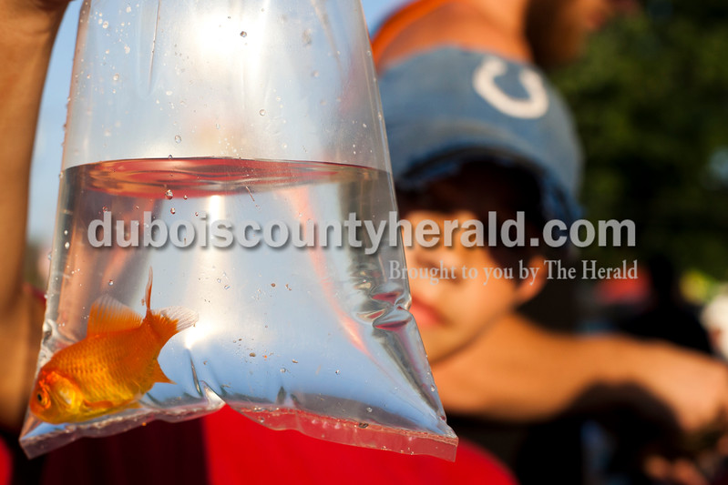 Lucas Washington of Santa Claus, 11, held up the fish he won from a carnival game at the Dale Fall Fest on Saturday. Ariana van den Akker/The Herald