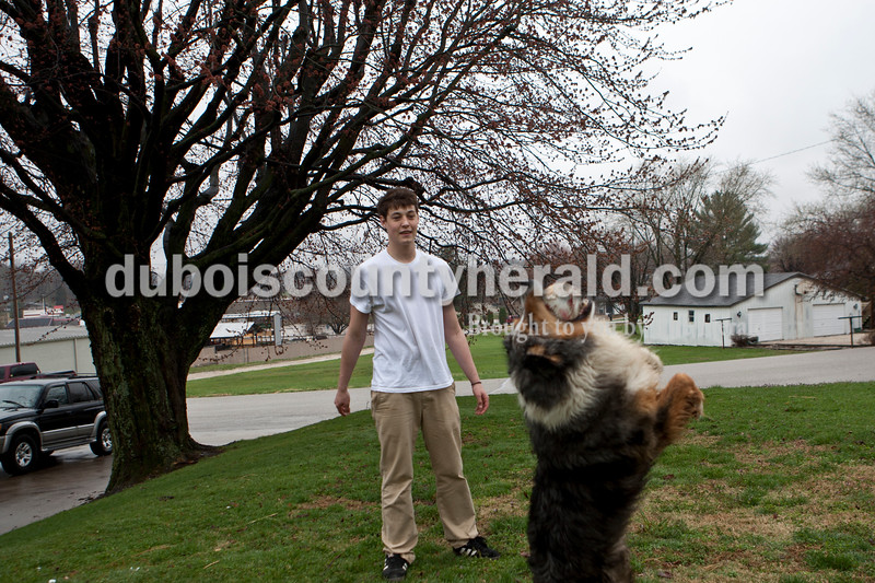 "Heather Rousseau/The Herald<br /> Christian Leinenbach, 18, of Jasper, threw a softball to his dog, Lilly, who caught it in the air, at their home on Vincent Street in Jasper after school on Monday.  Leinenbach said that after being in school all day he prefers to be outside, but he wishes the nicer weather would stay. ""Lilly likes the weather though,"" he added about the rainy day."