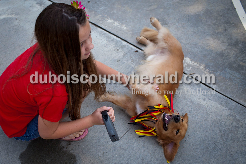 Megan Rydberg, 11, of Jasper, rubbed the belly of Buddy, her Golden Retriever/ Dachshund mix after the pet contest at Robert E. Parker Park on Saturday. The contest was part of the Jasper Strassenfest celebration. <br /> Caitlin O'Hara/The Herald
