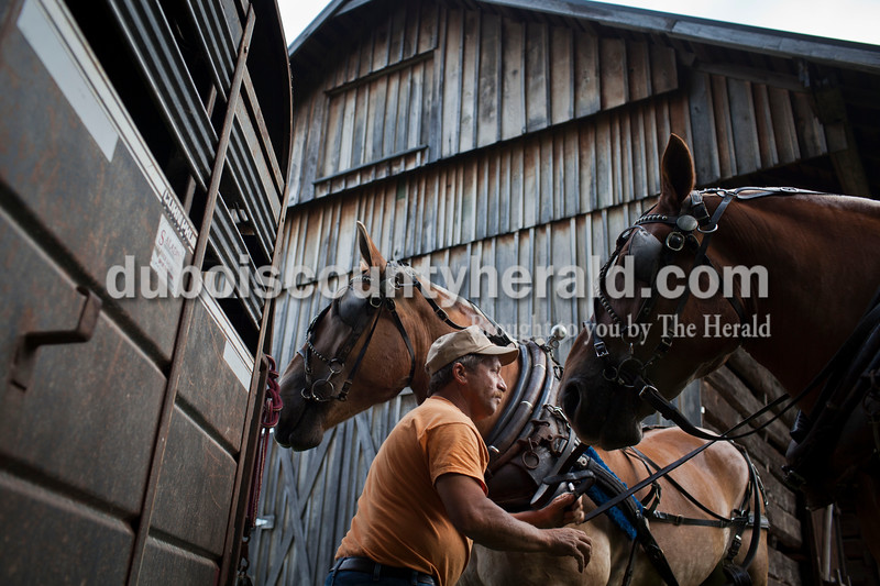 Linus Hagedorn of Celestine gets his Belgian horses Charlie and Dale ready to pull logs at the Jasper Strassenfest on Saturday.<br /> Caitlin O'Hara/The Herald