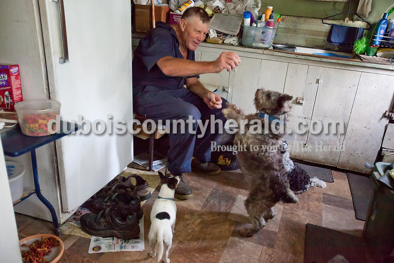 "Rachel Mummey/The Herald<br /> After mowing his yard, Jerry Kuhl of Duff rested in his kitchen while feeding his dogs, Jessie, left, Sally, and Trinket, treats on Monday afternoon. ""Everyday at four they come remind me, it's their time to get fed,"" Kuhl laughed. ""I don't know what I'd do with out them."" The 66-year-old bachelor has lived in the house since he was nine-years-old."
