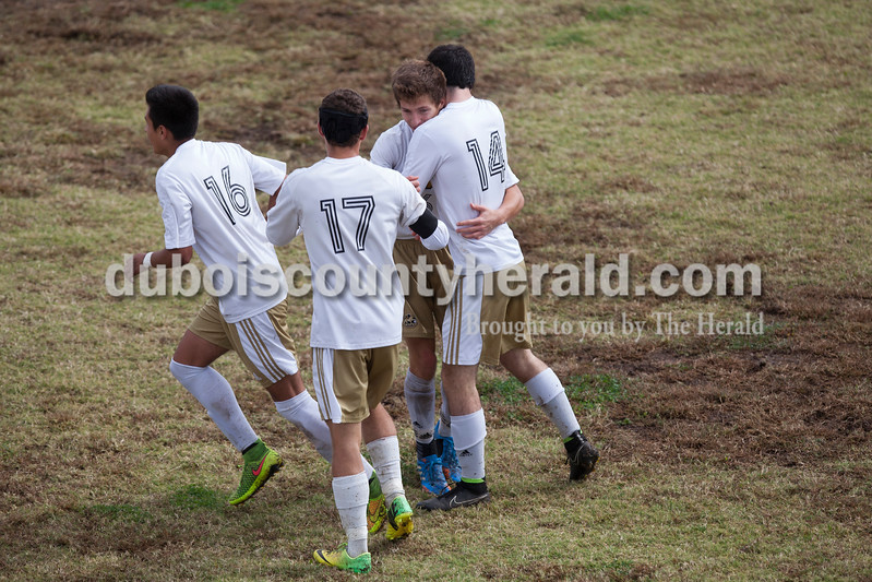 Jasper's Angel Hernandez, Tyler Haskins and Luke Ackerman congratulated Caleb Hurst, second from left, on his second goal during the 2A sectional final Saturday in Evansville. The Wildcats won 3-0. <br /> Caitlin O'Hara/The Herald