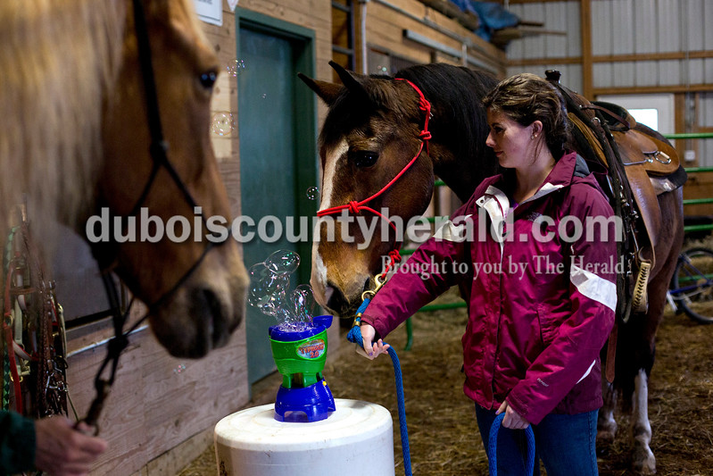 Erika Mehringer of Ireland held her horse Jake close to a bubble machine to see his reaction during a Red Hats Purple Chaps horse de-spooking clinic at A&B farms in Ireland. The horses were walked through different obstacles and next to noises that they may encounter during a parade. This helps ensure their safety the the safety of those around them during future parades. <br /> <br /> Alisha Jucevic/The Herald