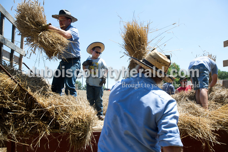 Erica Lafser/The Herald<br /> Bo Johnson of Bristow, 6, stood in the middle of men during the Schnellville Sesquicentennial wheat threshing on Sunday at the field outside of the Schnellville Community Club. This event occurs every 25 years.