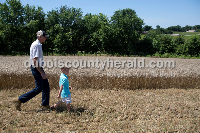 Erica Lafser/The Herald<br /> Charlie Verkamp of Schnellville, left, walked with his nephew's kids that included Patrick Verkamp of Schnellville, 6, right, and Christopher Verkamp of Schnellville, 7, not pictured, during the Schnellville Sesquicentennial wheat threshing on Sunday at the field outside of the Schnellville Community Club. This event occurs every 25 years.