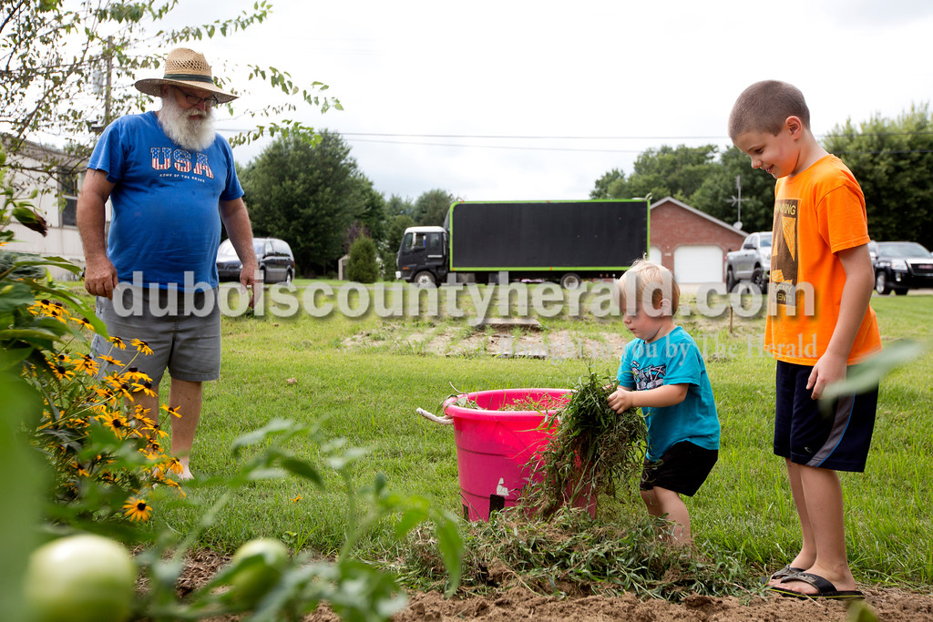Ariana van den Akker/The Herald<br /> Bentley Mohr of Ferdinand, 3, center, and his brother Issac, 8, helped their great uncle John Mohr of Ferdinand by putting picked weeds in a bucket while at John's home on Monday afternoon. The boys spend their days at John and his wife Marjorie's home and sometimes help out with the garden.