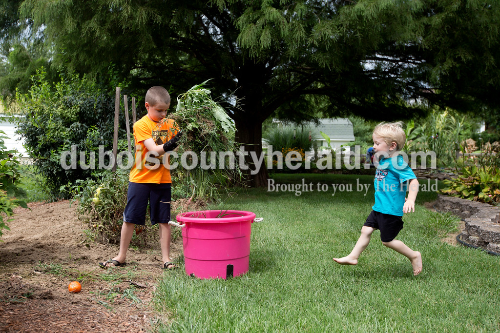 Ariana van den Akker/The Herald<br /> Bentley Mohr of Ferdinand, 3, ran over to help his brother Issac, 8, pile weeds into a bucket on Monday afternoon. Earlier in the day, their great uncle and aunt, John and Marjorie Mohr of Ferdinand, had picked them and piled them up. The two boys spend their days at John and Marjorie's house.
