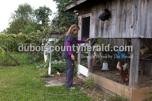 Erica Lafser/The Herald Paula Mayo of Jasper let her chickens out of their coop on Thursday afternoon in Jasper, before she did the daily check for their eggs. They usually have two to four eggs, but this day there were six from the five hens and one rooster.