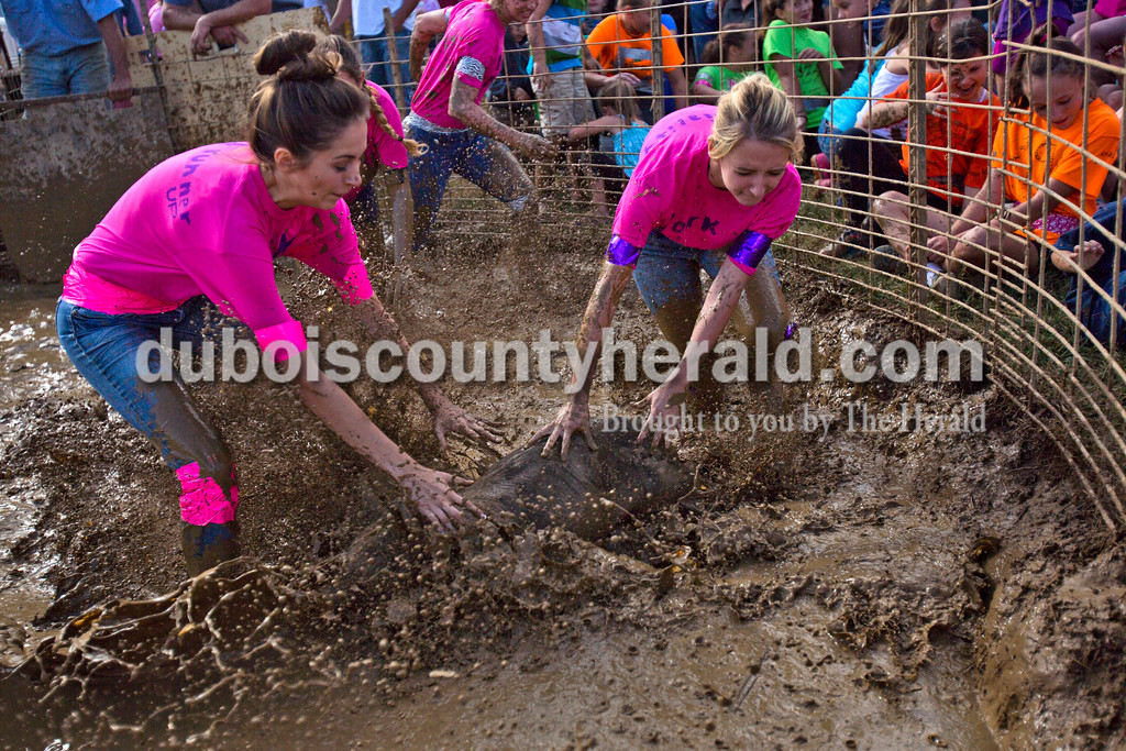 Alisha Jucevic/The Herald<br /> <br /> 2015 Miss Dale Fall Festival contestants Cassidy Stiles of Santa Claus, 16, and Taylor Dugas of Santa Claus, 18, scrambled for the hog during the Dale Fall Festival's annual hog wrestling contest Saturday.