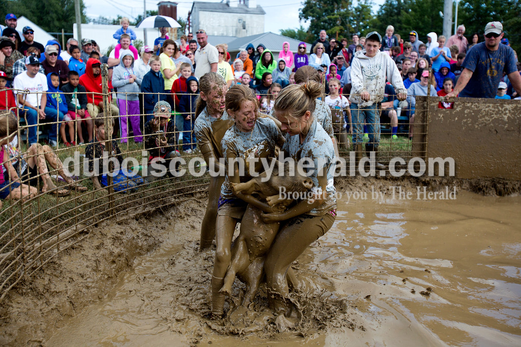 Alisha Jucevic/The Herald<br /> <br /> Haley Schnuck of Lamar, 11, left and her teammate Chloe Johnson of Santa Claus, 11, right, struggled with the pig as their teammates, Corrine Wood of Lamar, 11, and Macey Bolin of Santa Claus, 11, ran to help from behind them during the hog wrestling event Saturday at the Dale Fall Fest. About 20 teams participated in the event.
