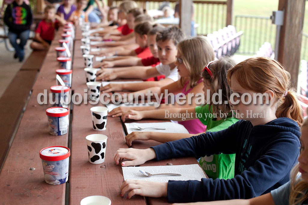 Erica Lafser/The Herald<br /> Kaitlyn Kahle of Chandler, 10, waited for the signal to start eating in the first annual ice cream eating contest held during the Holland Community Fest on Saturday at Holland Park in Holland. Kahle's grandparents' are Shirley and Jeep Kahle of Holland.