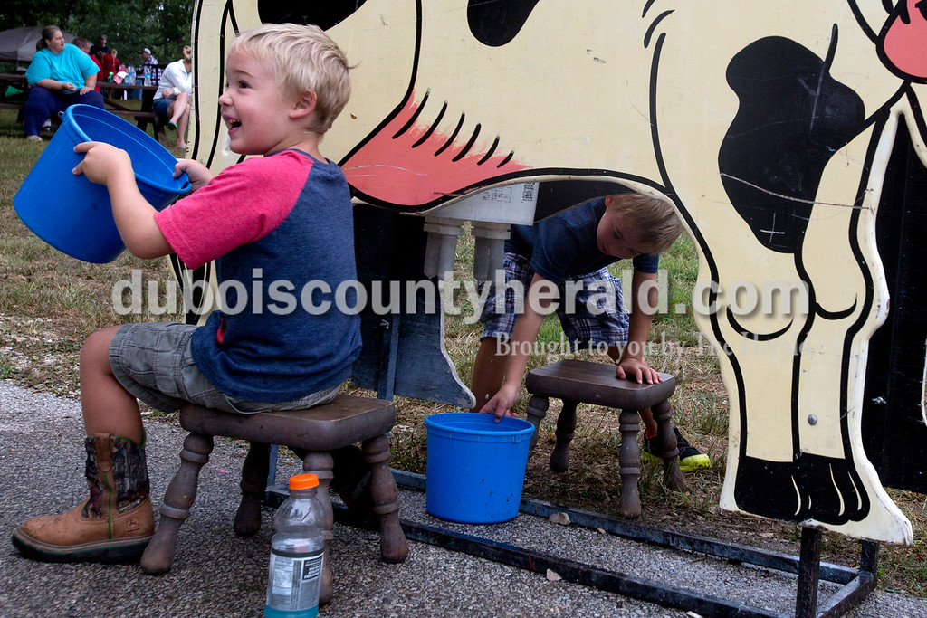 """Erica Lafser/The Herald<br /> Dexter Meyer of St. Anthony, 4, left, was excited to """"milk the cow"""" with his brother Izak, 6, during the Holland Community Fest on Saturday at Holland Park in Holland."""