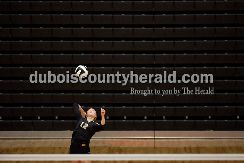 Erica Lafser/The Herald<br /> Jasper's Kinsey Bromm served the ball during Tuesday night's Class 3A regional championship against Mount Vernon at Jasper High School. The Wildcat's won in three games.