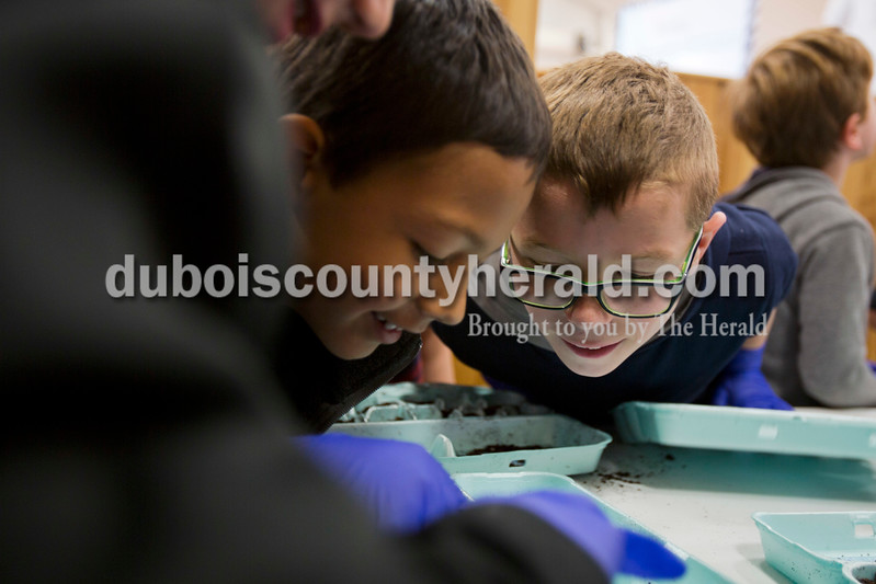 Alisha Jucevic/The Herald<br /> <br /> Fifth Street Elementary first-graders Nicolas Aguilera, left, and Nolan Mullins looked at a seed Nicolas planted during a field trip to The Lodge on Friday morning on the south side of Jasper. Nicolas joked that the seed was already starting to sprout. The field trip was a partnership between Fifth Street's Wellness Committee and Memorial Hospital's Hope Garden project. Memorial Hospital's Hope Garden will be planted, weeded and harvested by volunteers throughout the season and the produce will be sent to area food banks, Tri-Cap families, local schools and the hospital. Memorial Hospital Foundation executive director, Mike Jones, said they want to involve more students in the process. He said they hope to have local high school agriculture classes and Future Farmers of America clubs come out to the farm to volunteer throughout the season.