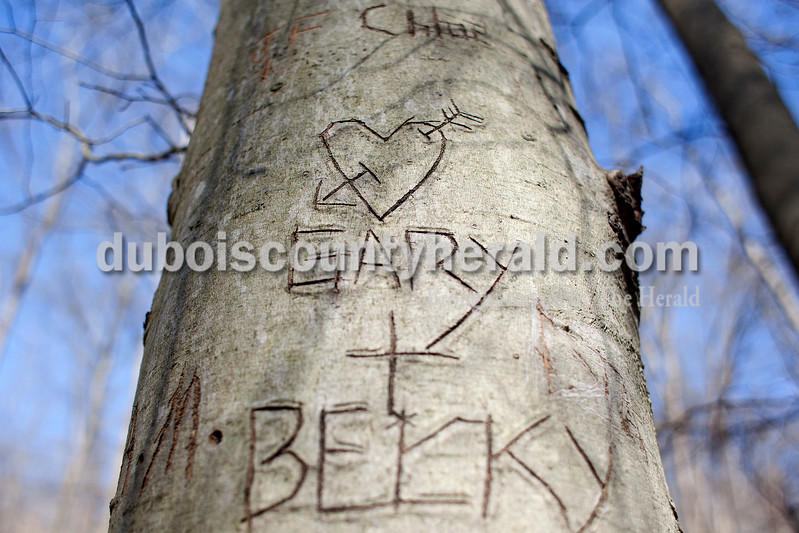 Many visitors mark that they visited the site by carving their names into trees along the trails. Some write their names on cliffs or in moss on boulders. Dave Weatherwax/The Herald