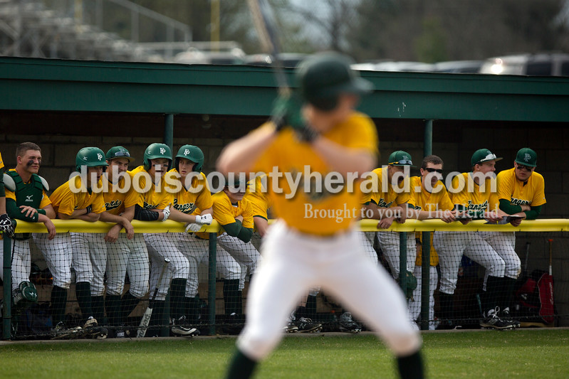 The Forest Park baseball team cheered on teammate Andy Schlachter as he batted during Wednesday's game against Crawford County in Ferdinand. The Rangers won 2-0. Ariana van den Akker/The Herald