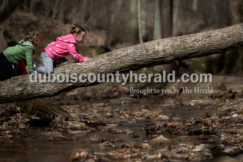 Aubrey Hargett, left, and Kyah Egg, both 4 and of Huntingburg, crawled along a fallen tree that spanned a shallow creek March 6 while hiking with family and friends. Dave Weatherwax/The Herald