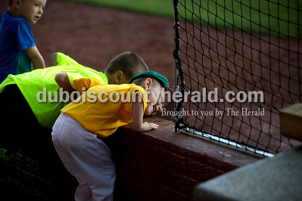 Koby Greulich of Ferdinand, 4, peeked into Forest Park's dugout during Friday evening's game against Southridge at League Stadium in Huntingburg. The Rangers won 5-4. Ariana van den Akker/The Herald