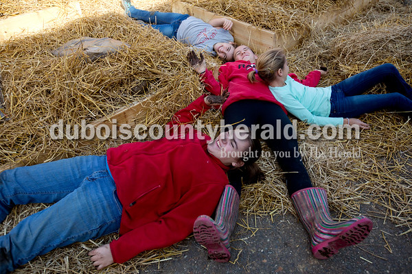 Sixth-grader Olivia Durcholz, top left, eighth-grader Grace Sickbert, Huntingburg Elementary fourth-grader Kate Durcholz and eighth-grader Camille Fleming laid in the straw they had just put down on top of and around the raised beds after helping fill the beds with soil on Nov. 25.