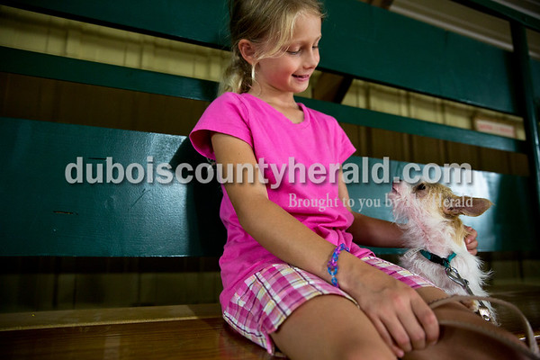 Sarah Ann Jump/The Herald Ellaina Lehmkuhler of Jasper, 8, sat with her dog Diamond during the dog obedience show at the Dubois County 4-H Fairgrounds in Bretzville on Thursday. Ellaiana said that next year she is planning show Diamond.