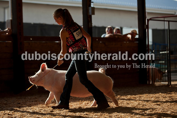 Katie Stenftenagel of Jasper, 13, directed her pig during Senior Showmanship on Tuesday evening at the Dubois County 4-H Fair in Bretzville.   Alisha Jucevic/The Herald