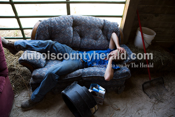 Sarah Ann Jump/The Herald Brandon Pund of St. Anthony, 16, napped in the beef barn at the Dubois County 4-H Fairgrounds in Bretzville on Thursday. 4-Hers bring in furniture at the beginning of the week to sleep and relax on during long days at the fair.