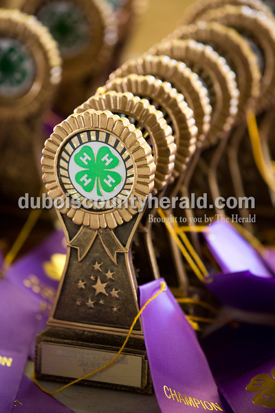 Sarah Ann Jump/The Herald Trophies and ribbons were lined up to be presented to the winners of the beef show at the Dubois County 4-H Fairgrounds in Bretzville on Thursday.