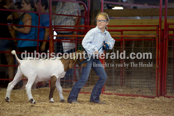 Sarah Shaw/The Herald  Claire Linette of Ireland, 8, showed during the Pre 4-H Goat Showmanship at the Dubois County 4-H Fairgrounds in Bretzville on Wednesday.