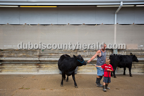 Dave Mitchell of Schnellville, helped his son, Carson, 6, lead their cow back into the barn Monday evening during animal check in at the Dubois County 4-H  Fairgrounds in Bretzville.    Alisha Jucevic/The Herald