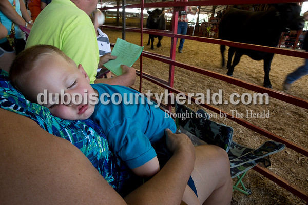 Sarah Ann Jump/The Herald Grifen Hopf of St. Anthony, 2, slept on his grandmother Kathy Hopf during the beef show at the Dubois County 4-H Fairgrounds in Bretzville on Thursday.