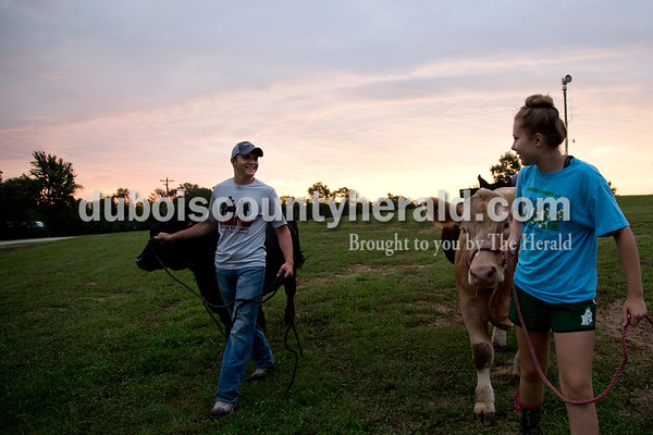 Sarah Shaw/The Herald  Prestyn Balsmeyer of Huntingburg, 17, and Allyson Werner of Ferdinand, 14, walked their steers around the Dubois County 4-H Fairgrounds in Bretzville on Wednesday morning before taking them to be washed.