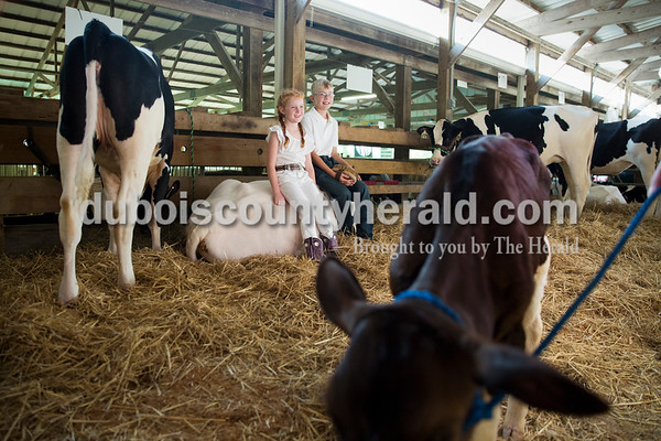 Sarah Ann Jump/The Herald Makenzi Ring, 7, and her brother Dylan, 12, of Huntingburg, sat on their heifer so that their mother Jeri Ring could take their photo before the dairy show at the Dubois County 4-H Fairgrounds on Tuesday morning.