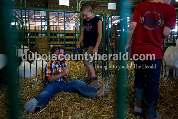 Will Sickbert of Huntingburg, 7, wore a rope muzzle and pretended to be a goat as he sat in one of his goat pens with Jacob Tempel of St. Henry, 7, and Isaac Heile of Holland, 7, Wednesday evening at the Dubois County 4-H Fair in Bretzville.  Alisha Jucevic/The Herald