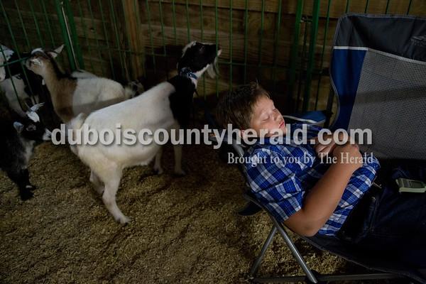 Sarah Shaw/The Herald  Kasey Verkamp of Dubois, 12, napped in the goat barn at the Dubois County 4-H Fairgrounds in Bretzville on Wednesday morning.