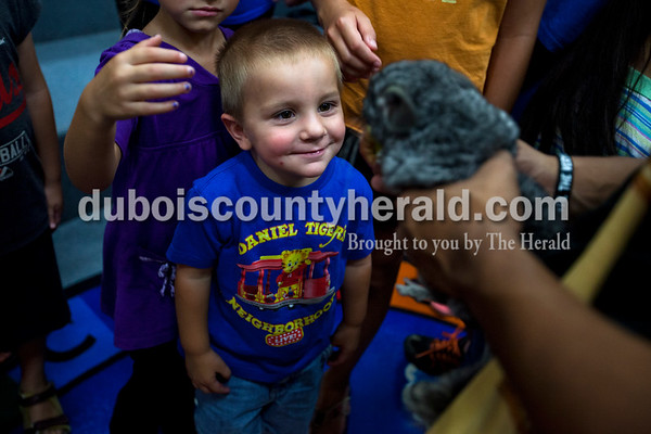 Jaxson Maffenbeier of Haysville, 4, admired a chinchilla during Animal Tales' Nature's Olympians presentation Tuesday afternoon at the Jasper Public Library.   Alisha Jucevic/The Herald