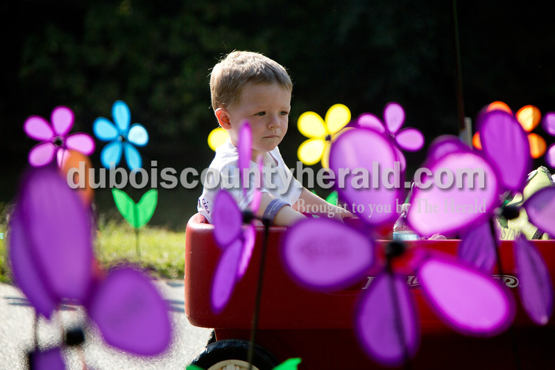 "Sarah Shaw/The Herald<br /> Kamren Terrell of Mitchell, 2, rode in his wagon through the Promise Garden during the Walk to End Alzheimer's at the Jasper Riverwalk on Saturday. Participants ""planted"" flowers honoring and remembering those affected by the disease. This year's event raised over $50,000 for the Alzheimer's Association, which helps fund Alzheimer's support, care, and research."