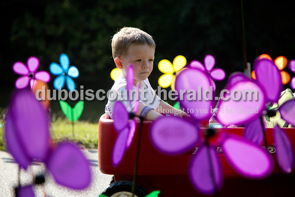 """Sarah Shaw/The Herald Kamren Terrell of Mitchell, 2, rode in his wagon through the Promise Garden during the Walk to End Alzheimer's at the Jasper Riverwalk on Saturday. Participants """"planted"""" flowers honoring and remembering those affected by the disease. This year's event raised over $50,000 for the Alzheimer's Association, which helps fund Alzheimer's support, care, and research."""