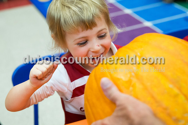 Sarah Ann Jump/The Herald Holy Trinity Catholic School Central Campus preschooler Lucy Greulich peeked inside of a pumpkin but opted not to stick her hand inside at the school in Jasper on Monday afternoon.