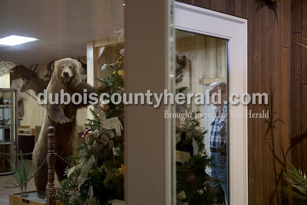 Sarah Shaw/The Herald Tom Kellams of Ireland volunteered in the Wildlife Adventures Room at the Dubois County Museum in Jasper on Tuesday. Kellams designed and organized the taxidermy exhibit which opened last year.