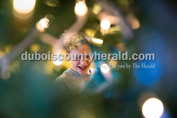 Sarah Ann Jump/The Herald Jasper Middle School eighth-grader Amos Buschkoetter looked over the Christmas tree he helped decorate at St. Charles Health Campus in Jasper on Thursday.