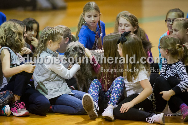 Sarah Ann Jump/The Herald Ireland Elementary School fourth- and fifth-graders pet Serena, a therapy dog belonging to Karen Stenftenagel of Ireland, at the school on Thursday.