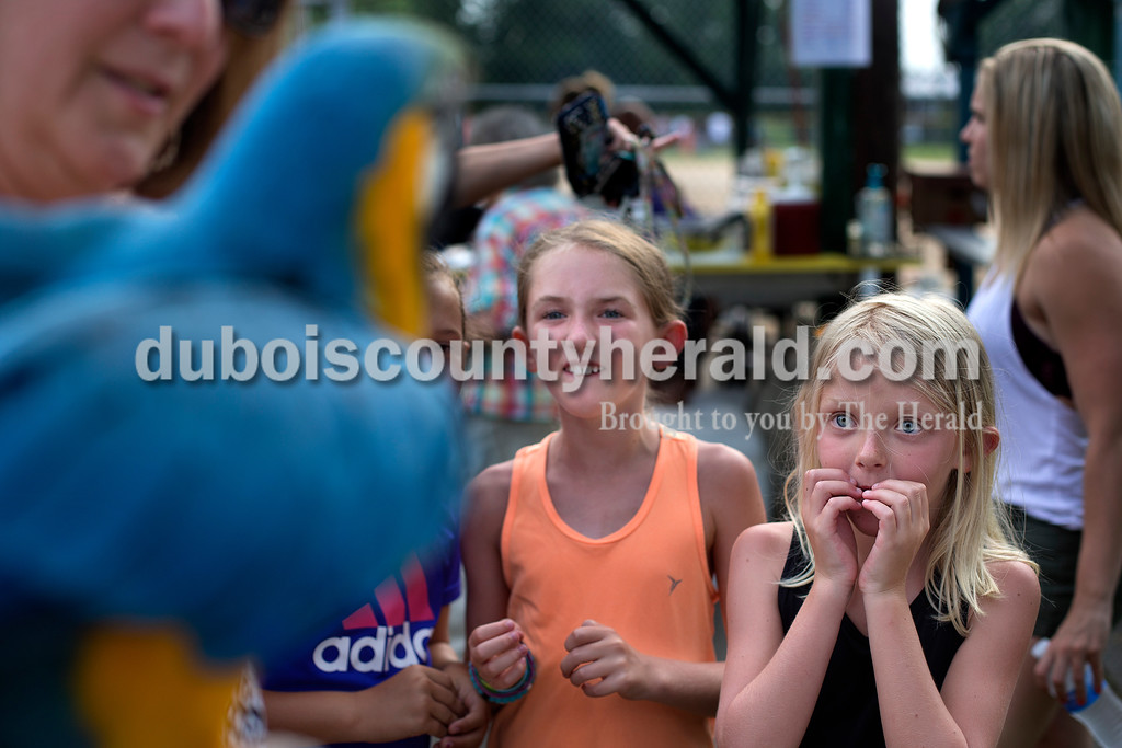 Brittney Lohmiller /The Herald <br /> Chelle Cherry of Huntingburg, left, held out her blue and gold macaw, Sky, for Hattie Dilger, 10, Adi Schipp, 10, and Kenley Schipp, 7, all of Ferdinand, during Heimatfest at 18th Street Park Friday evening. The two day festival kicked off with a cornhole contest, beer keg toss and a bubble car.