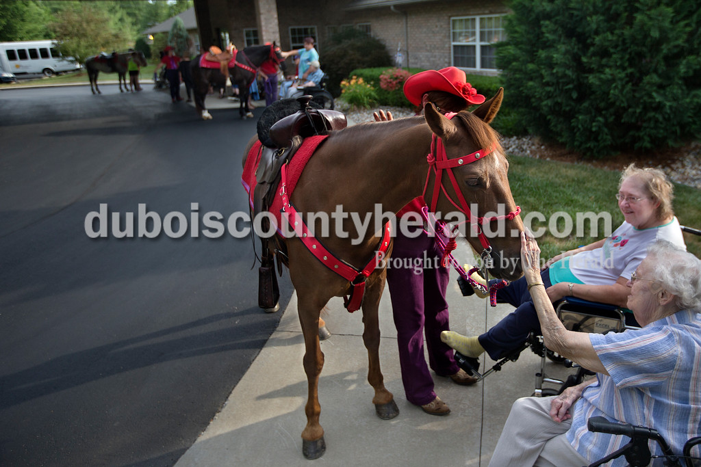 Brittney Lohmiller /The Herald <br /> Red Hats Purple Chaps of Indiana member Janet Welp, left, held her horse, Merry, steady while Brookside Senior Living Community residents Aline Weyer stroked Merry's muzzle and Diane Hurst watched Wednesday evening. Members of the Red Hats Purple Chaps of Indiana, a chapter of the Red Hat Society, have been visiting Brookside for the past five years.