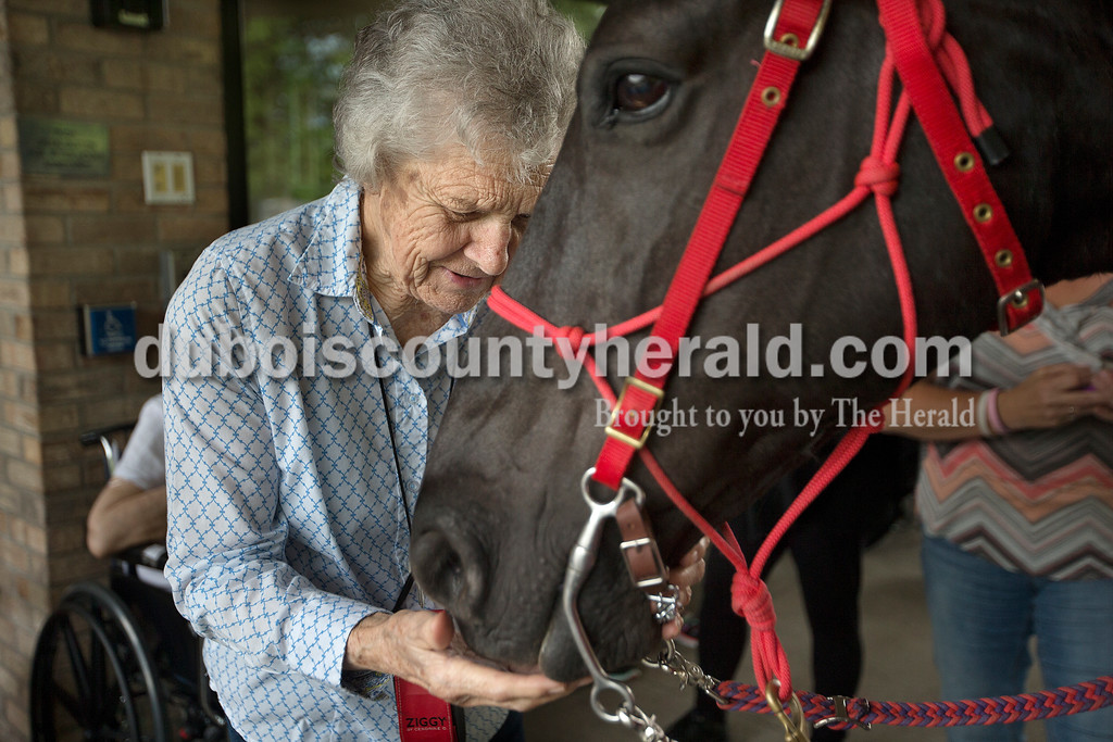 "Brittney Lohmiller /The Herald <br /> Brookside Senior Living Community resident Bernida Jochim stroked the muzzle Red Hats Purple Chaps of Indiana member Anne Mehringer's horse, Skipper, Wednesday evening. Members of the Red Hats Purple Chaps of Indiana, a chapter of the Red Hat Society, have visited Brookside for the past five years. ""We let the residents pet them and often times they reminisce about the horses they had in their youth,"" Red Hat Purple Chaps of Indiana Board of Directors Treasurer Rose Terwiske of Jasper said."