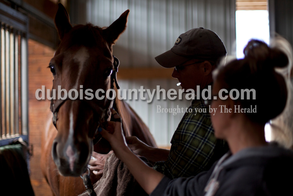 Dr. Greg Hoagland is one of few large animal veterinarians Dubois County and he spends much of his week away from his office driving to appointments throughout Dubois, Davies, Pike, Warrik, Spencer, Perry Crawford, Orange and Harrison County. Christi O'Neal of Lamar steadied her horse as Dr. Greg Hoagland administered vaccinations on Feb, 17 at O'Neal's ranch, Wild Serenade, in Stendal. Hoagland also checked to see if one of O'Neal's mares was ready for breading.