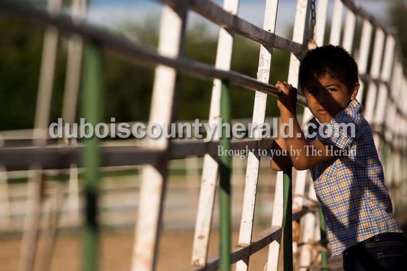 Tegan Johnston/The Herald<br /> Ricardo Vanegas of Holland, 6, watched the team roping during the Lone Star Rodeo on Saturday at the Dubois County 4-H Fairgrounds in Bretzville.