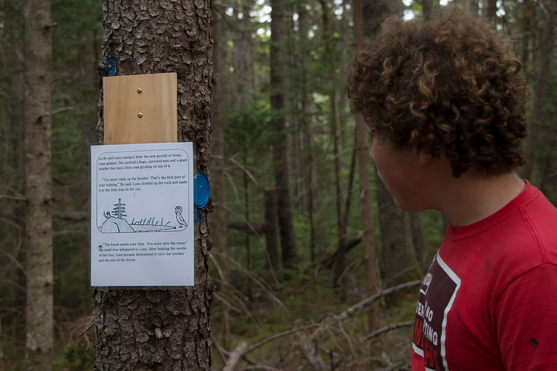 CASTINE, Maine -- 06/27/18 -- Students of Adams School in Castine read a fictional story they created and posted along a public hiking trail at Greenbie Natural Area on June 27 in Castine. (Aislinn Sarnacki | BDN)