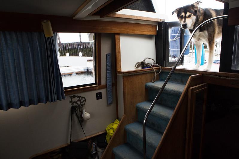 boatpeople040717-6.jpg