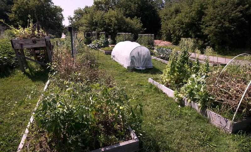 veggietheft 2.jpg