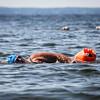 WestbrookSwimmer080917-3.jpg